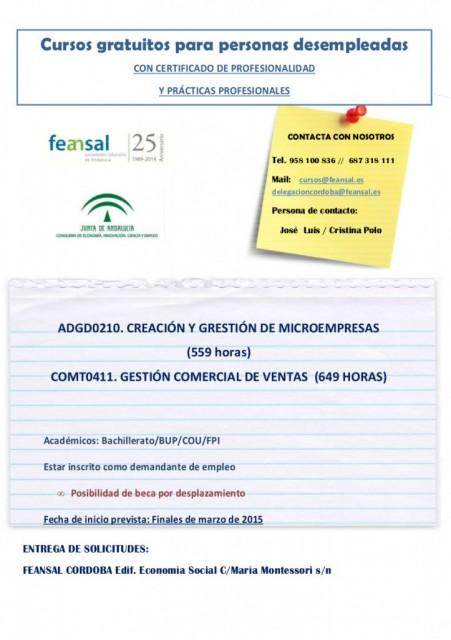 CURSO-FEANSAL-723x1024