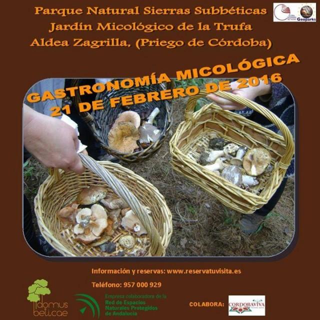 Pr ximos eventos domus beticae s l gastronom a for Jardin micologico la trufa