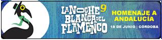 Banner-IX-noche-blanca-del-flamenco-2016-cordoba-Plano