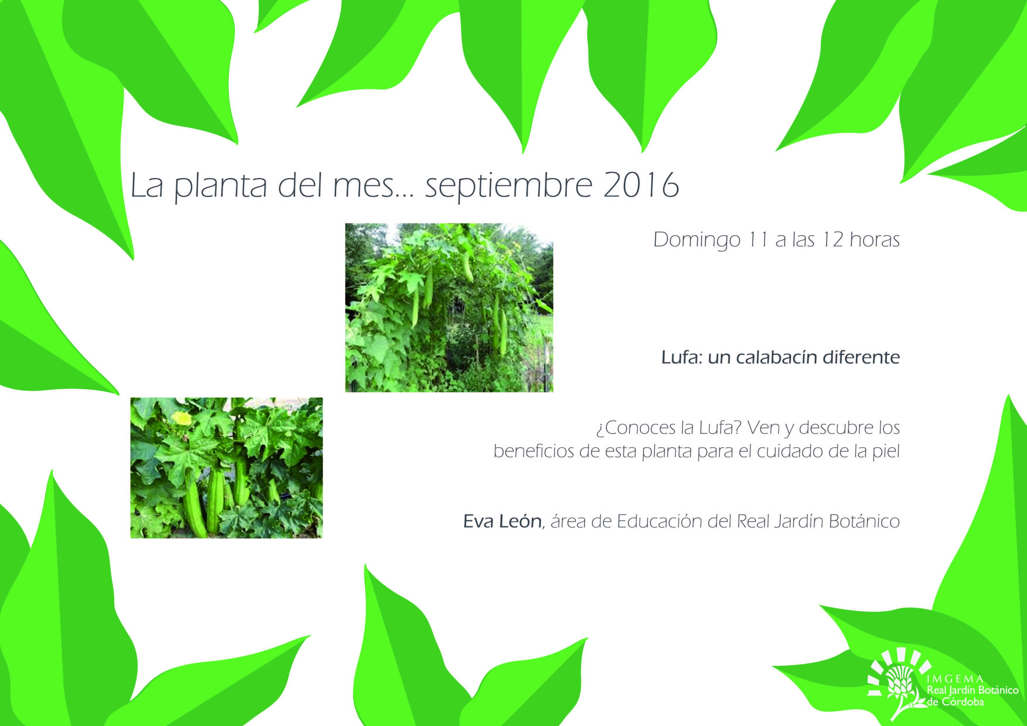 Pr ximos eventos jard n bot nico de c rdoba imgema for Calendario jardin botanico 2016