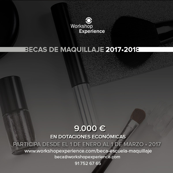 grafica-becas-MAKE-UP-2017-2018