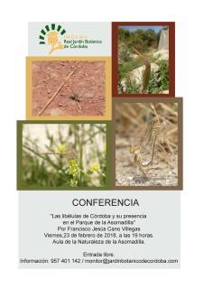 Cartel-conferencia-libelulas-en-la-Asomadilla