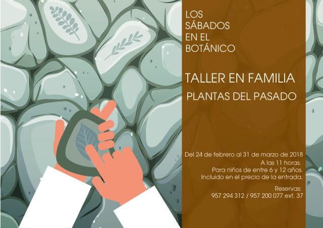 Cartel-taller-en-familia-febrero (1)
