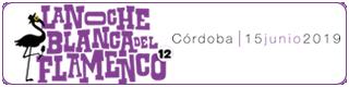 Banner-noche-blanca-del-flamenco-2019-cordoba-plano
