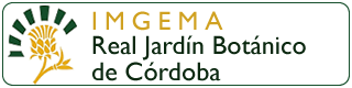 banner-imgema-real-jardin-botanico-de-cordoba-plano