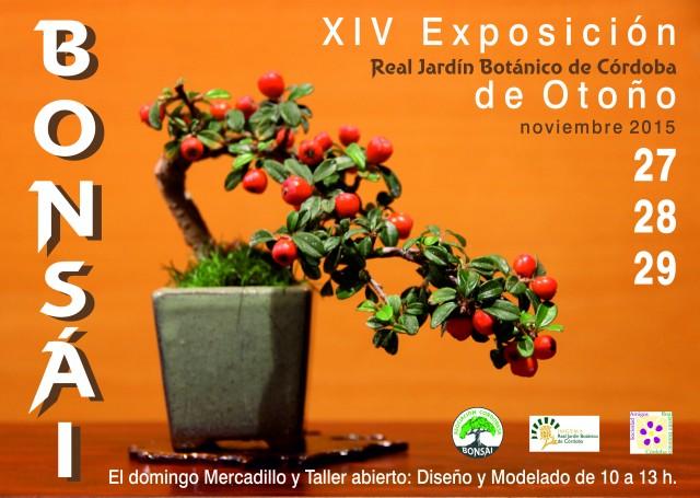 Cartel-exposicion-bonsais-01