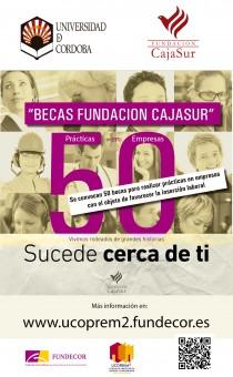 fundacioncajasur2015-210x340