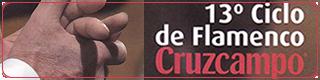 Banner-13-ciclo-de-flamenco-cruzcampo-por-la-ruta-de-las-tabernas-de-cordoba-2016-plano