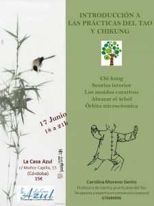 tao-y-chikung
