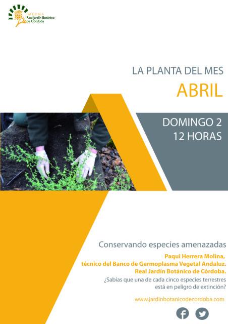La-planta-del-mes-abril