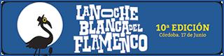 Banner-X-noche-blanca-del-flamenco-2017-cordoba-Plano