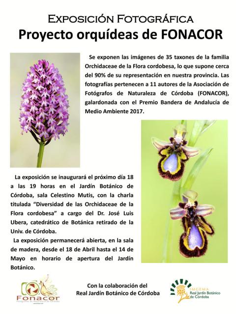 cartel-expo-orquideas