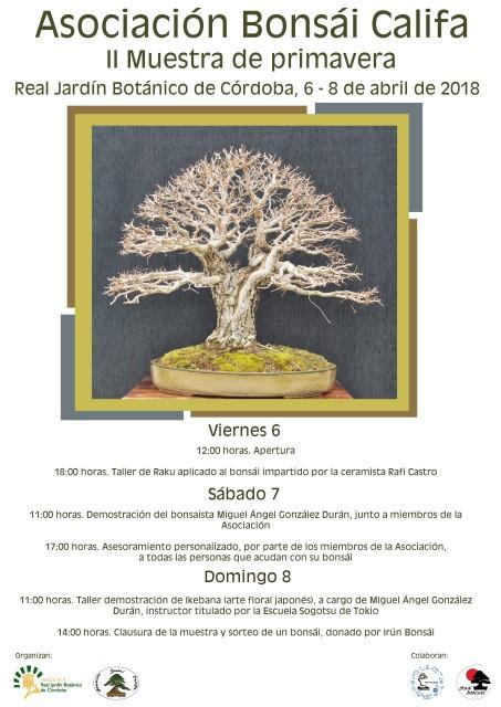 Cartel-muestra-bonsai