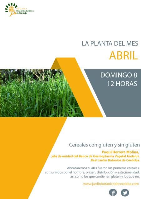 La-planta-del-mes-abril-1
